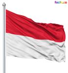 indonesiaflagpicture1