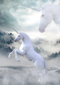 unicorn-1737897_1920